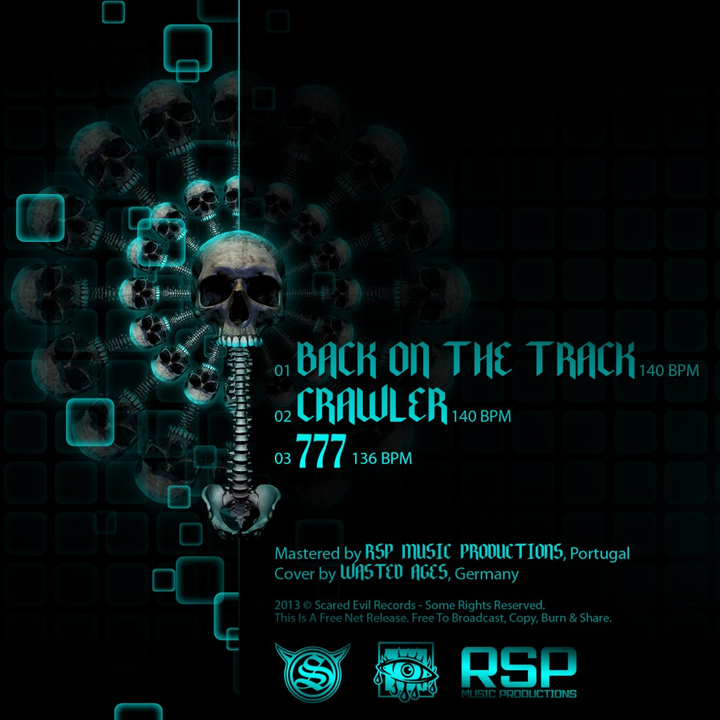 2013_haatz-dark-sadhu_back