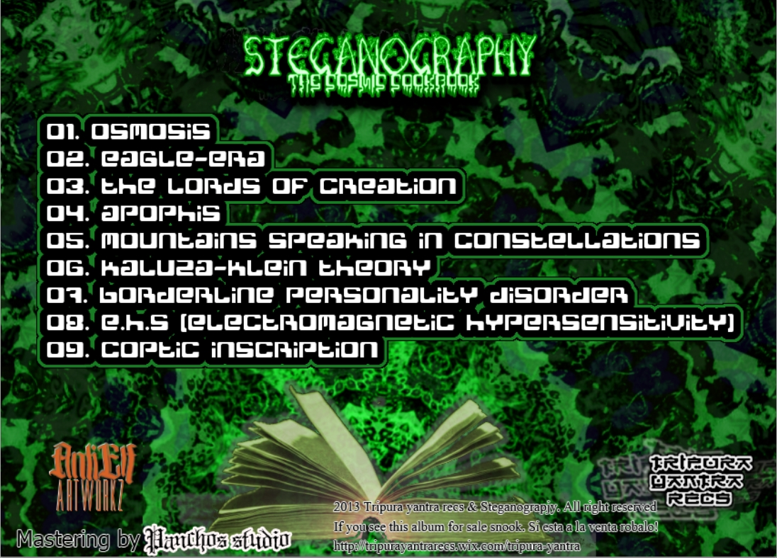 00-Steganography - The Cosmic Cookbook  -2013-(back)-upe.jpg