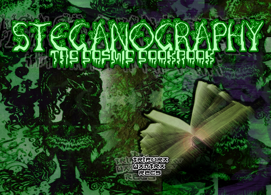 00-Steganography - The Cosmic Cookbook -2013-(cover)-upe.jpg